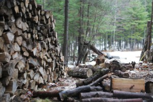 Firewood pile store