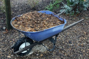 Mulch as natural termite attractor