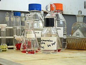 Chemicals for subteranean termite treatment