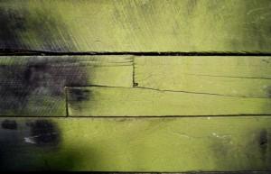 CCA-treated termite resistant wood