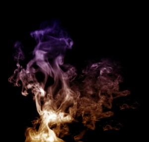 Chemical fumigation for termites vs heat treatment