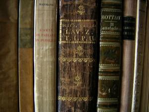 Subterranean termites eat cellulose containing books