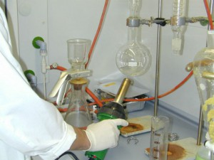 Lab research of Termidor DRY powder