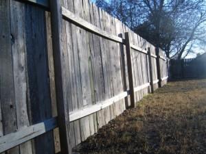 Termidor termite dust treatment for fence