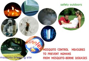 Mosquito fever prevention in Brazil