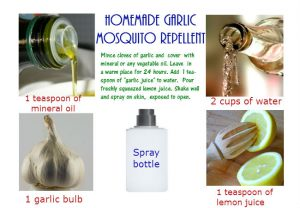 Body garlic spray for mosquitoes