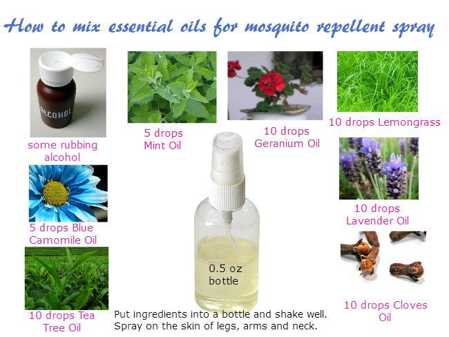 Essential oils for mosquito repellent recipes