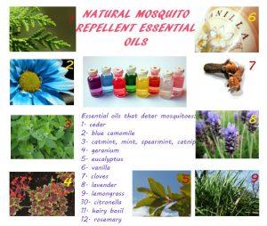 Natural mosquito repellent essential oils