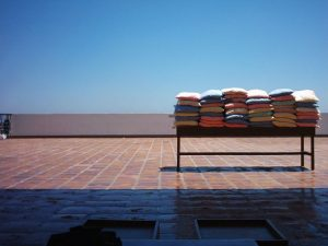 Pillows in the sun for bed bug treatment