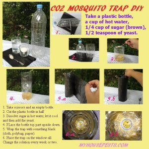 CO2 mosquito trap DIY