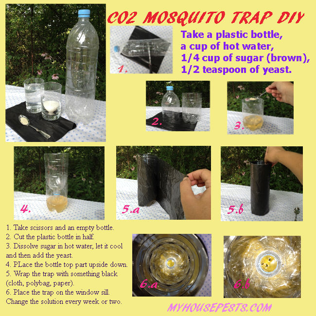 Diy Carbon Dioxide Mosquito Trap