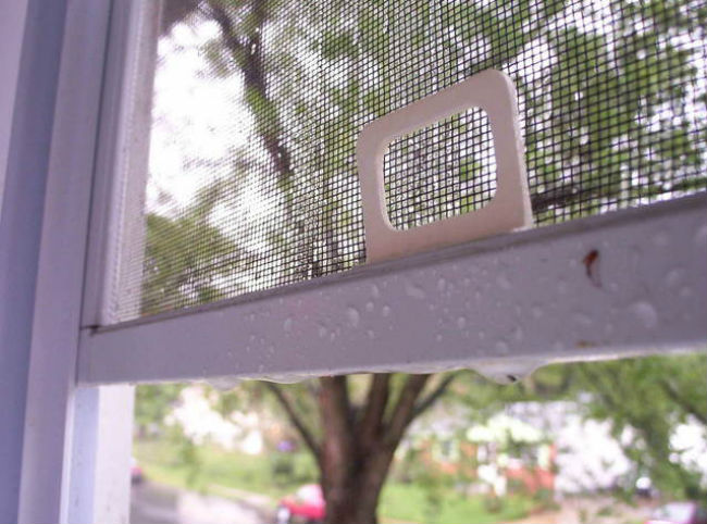 Mosquito window screen after rain