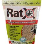 Natural rodenticides are eco-friendly and safe alternatives to chemicals