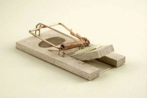 Classic mechanical rat trap