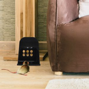 Electronic rat traps in use