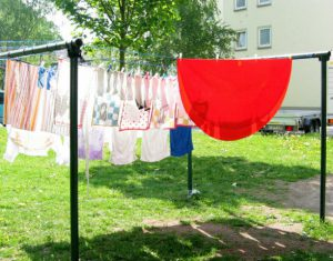 Laundry and air dry for rat decontamination